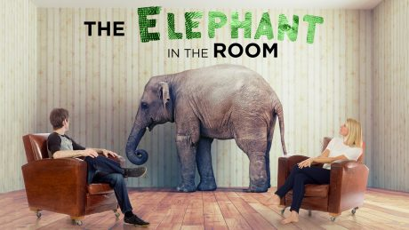 Cover Art for The Elephant in the Room
