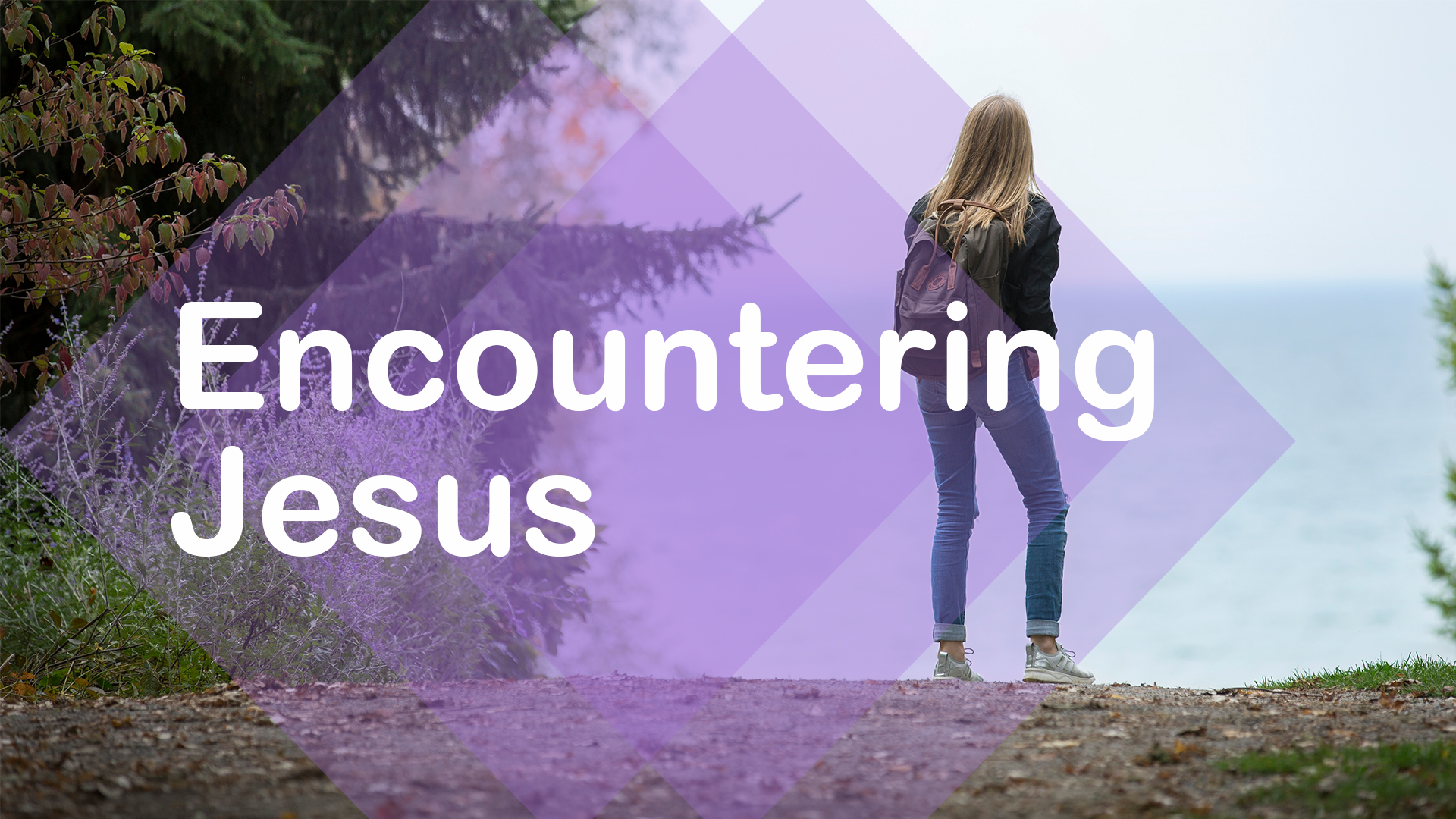 Cover Art for Encountering Jesus